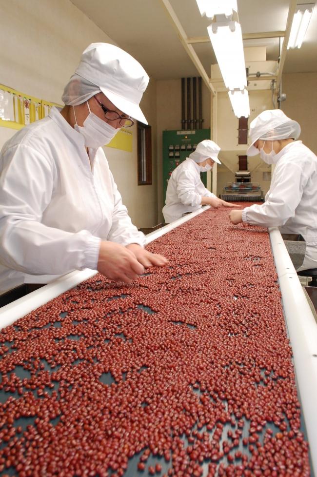 小袋豆でSQF認証 品質差別化へ5月にも JA帯広かわにし