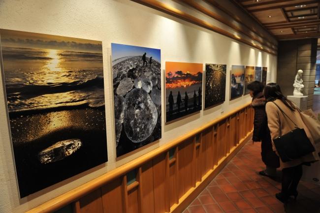 「海の宝石」写真展開幕 北海道ホテル