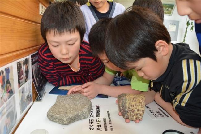 南極の石が来た! 卒業生が寄付 音更・昭和小
