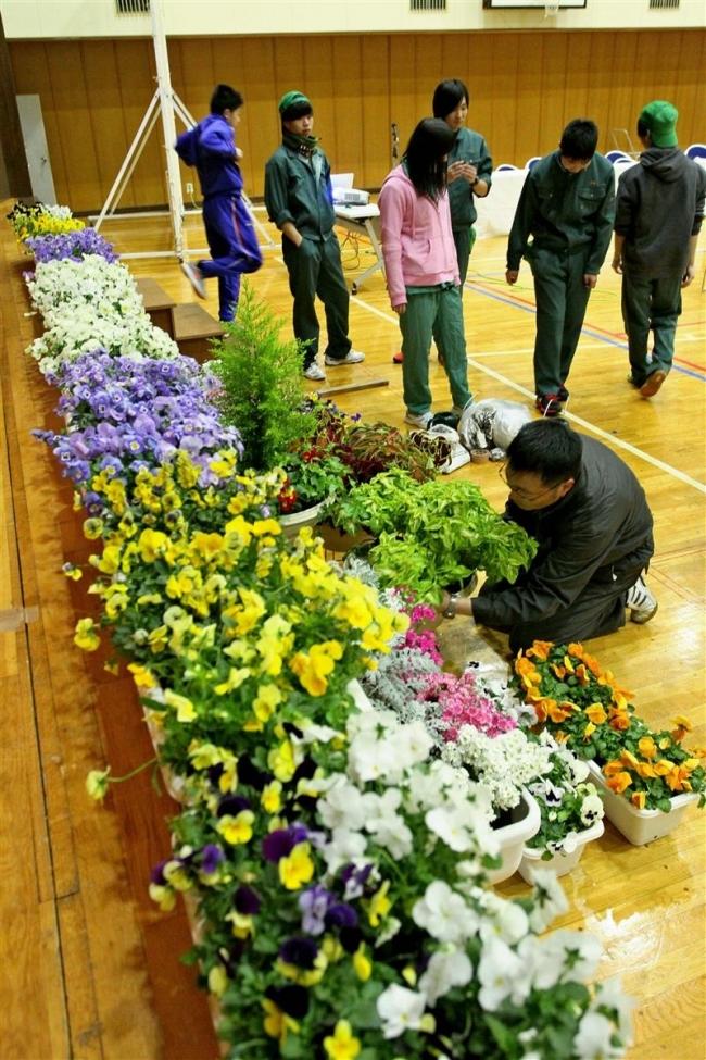 手作りの花で中学卒業式彩る 中札内高等養護