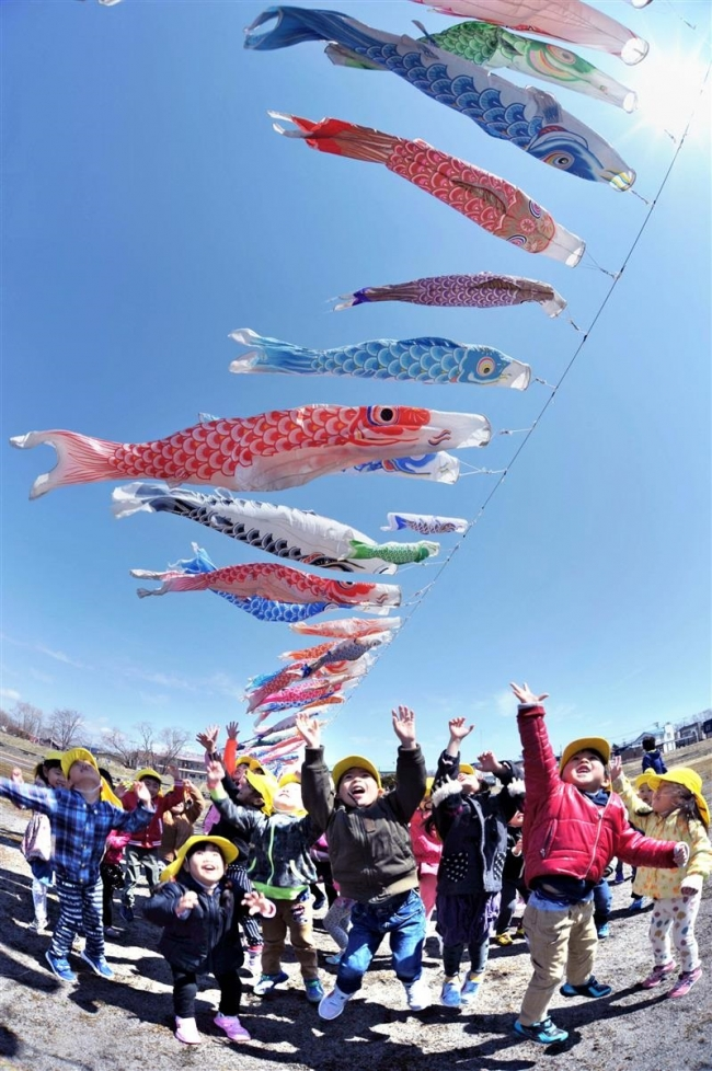 青空の下、236匹泳ぐ 大樹・歴舟川清流鯉のぼり