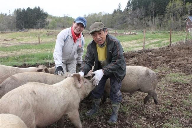 元北大教授の秦さん、放牧豚飼養に挑戦中 幕別・忠類