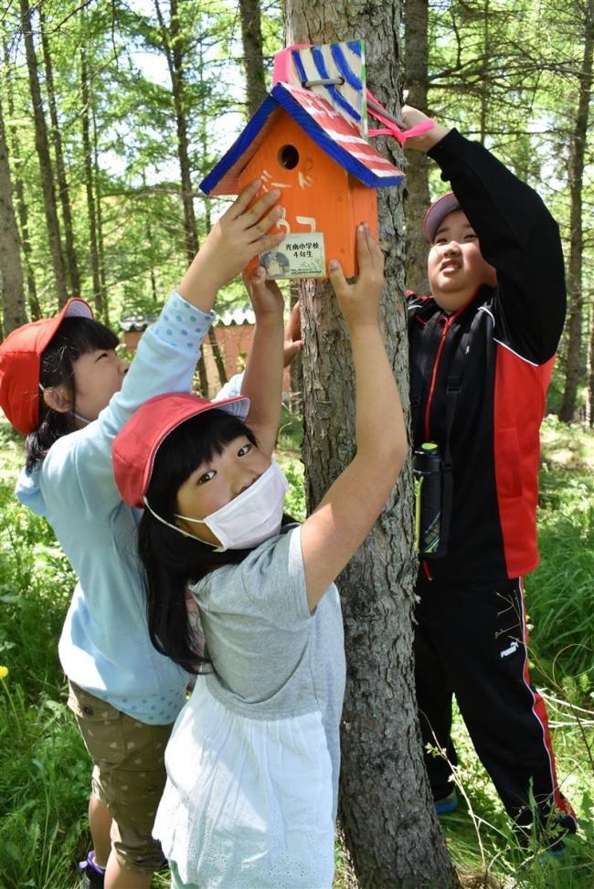 復興願いバードハウス設置 光南小児童が札内川岸で
