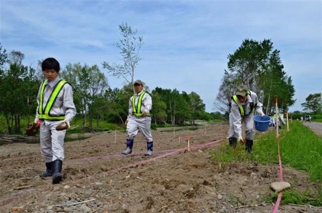 帯工業高生が種まき 台風被害の帯広川河川敷に