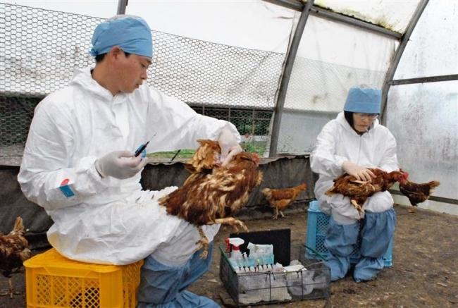 獣医偏在 家畜系は不足 「加計新学部」に十勝の声