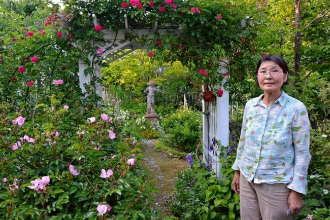 池田の小林さん宅 バラが見ごろ