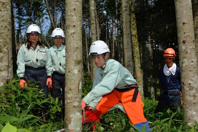 帯広農業高生が林業現場体験 女子生徒2人も