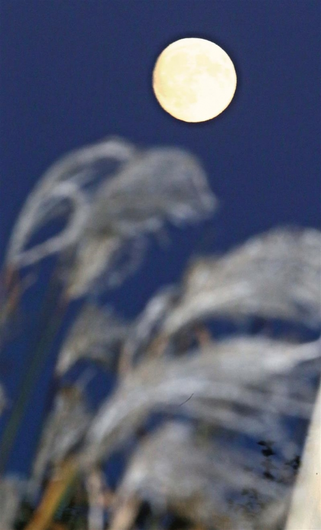 夜空に「中秋の名月」