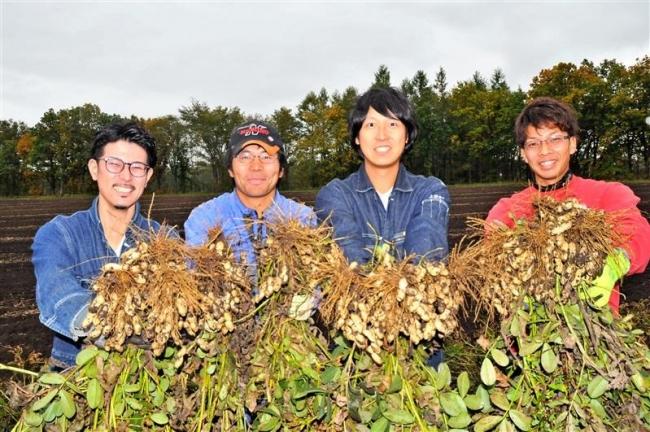 落花生が「豊作」 芽室の若手グループ