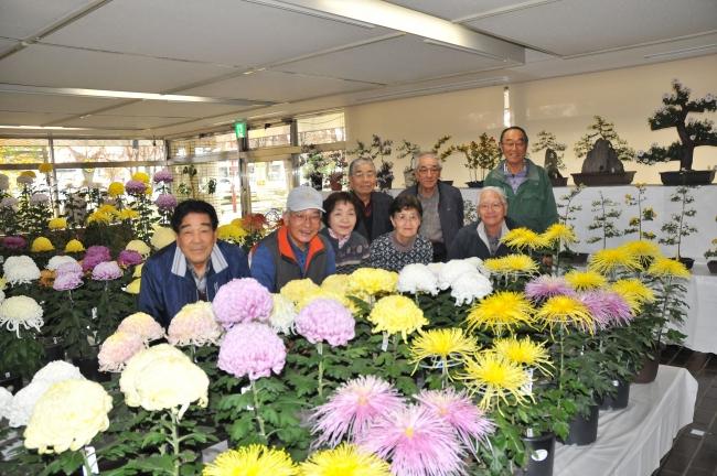 「文化の集い」に花添えて 芽室で菊花展