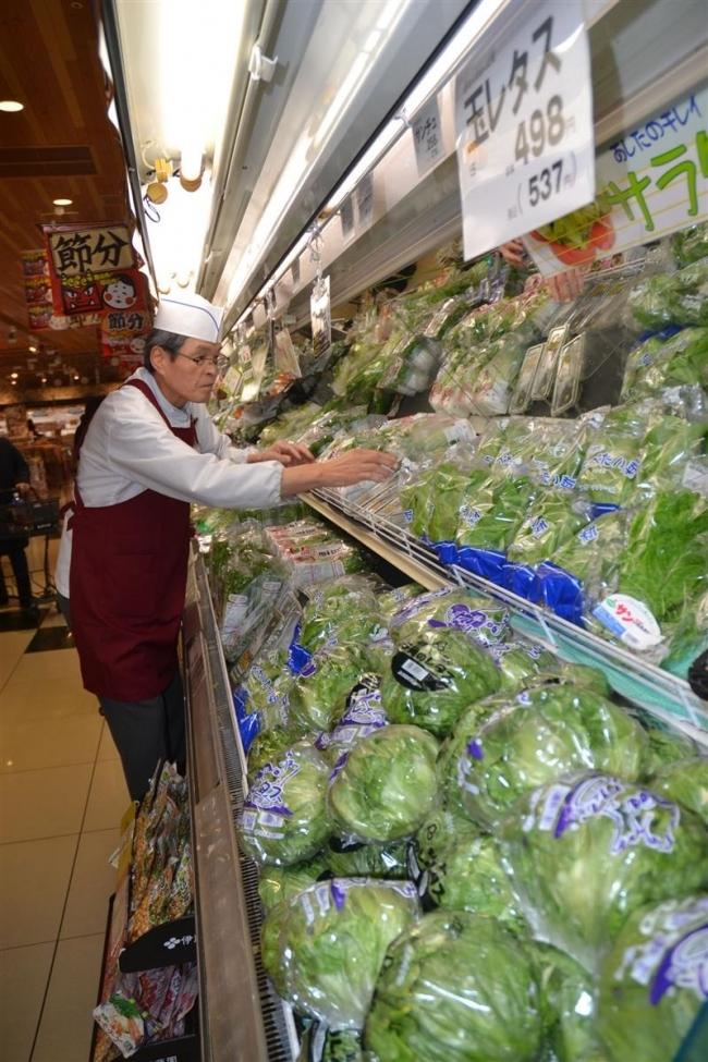 野菜高値続く 管内スーパーなど苦慮