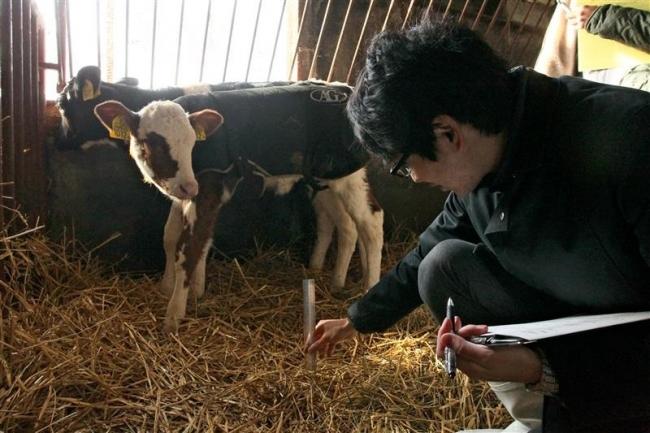 アニマルウェルフェアの点検体験 牛乳共同購入者が忠類酪農家訪