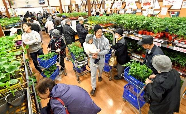 新鮮野菜求めにぎわう 愛菜屋オープン