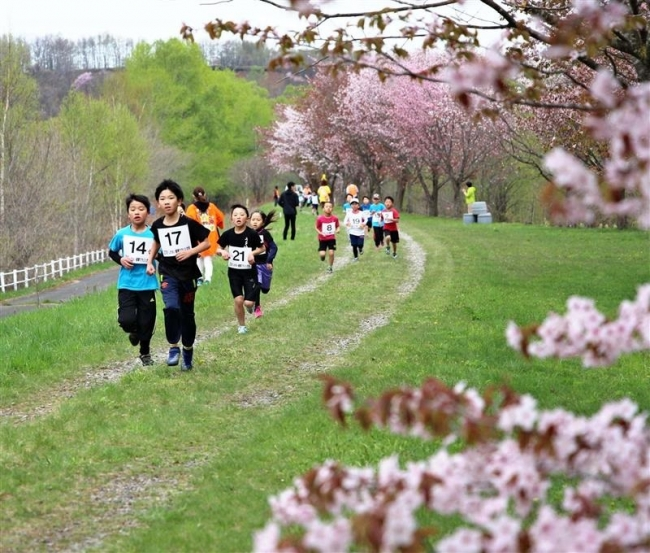 桜並木で健脚競う 鹿追健康マラソン大会