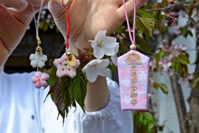 今年も桜御守頒布 音更神社