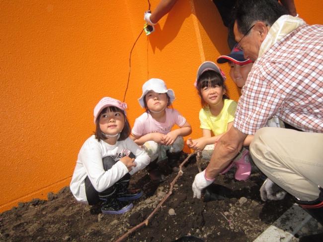 帯広ロータリークが保育園に苗木などを寄贈