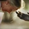 地球の真実~ナショジオ写真展から(6)「マイケル・ニコルズ『動物の心が開いた瞬間』」