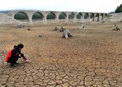 水位が上がらず、全景がまだ見えるタウシュベツ川橋梁。切り株の姿や土にひび割れも(11日、金野和彦撮影)