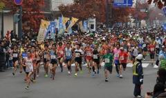 フードバレー力走4500人  とかちマラソン2014 写真2