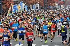 フードバレー力走4500人  とかちマラソン2014 写真3
