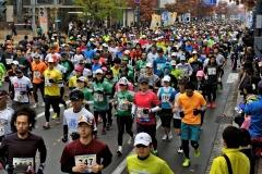 フードバレー力走4500人  とかちマラソン2014 写真4
