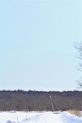 上空に向かって打ち上がるロケット(東海大学提供)