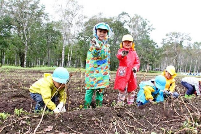 園児が楽しくイモ掘り 大樹