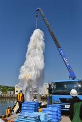 大樹沖15キロに着水し、漁船で回収された大気球。高度28キロに達した気球は信号で自動的に引き裂かれる(6月23日午前8時半すぎ)