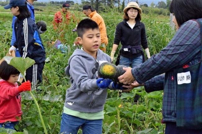 JA十勝池田町青年部 子どもたちが収穫体験