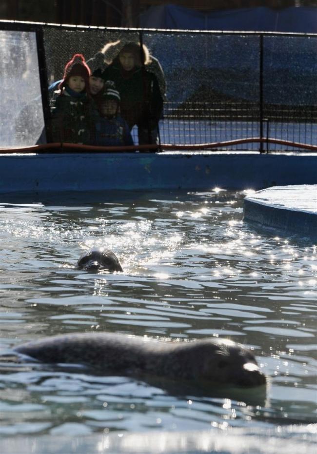冬の姿を観察 動物園冬季開園始まる