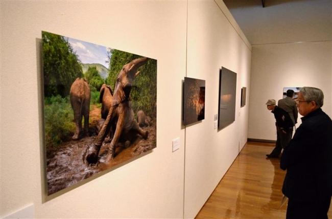 自然の驚異や文化 ジオグラフィック展が開幕 帯広美術館