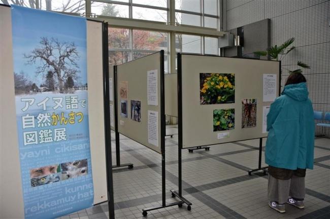 「アイヌ語で自然かんさつ図鑑」のパネル展 市役所1階で開催