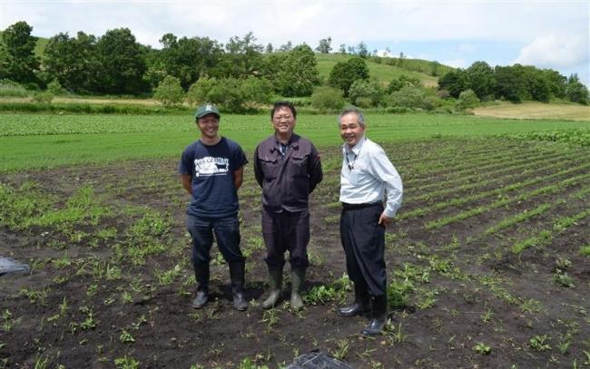 8月に収穫体験のひまわり農園 本別