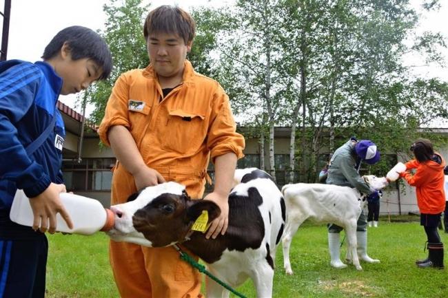 ミルクができる過程学ぶ 畜大で親子体験学習