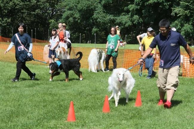 ワンちゃんの運動会5年ぶり 緑ケ丘公園に70匹集合