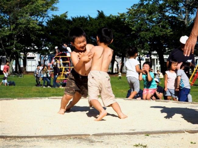 伝統のちびっこ相撲で熱戦 広尾
