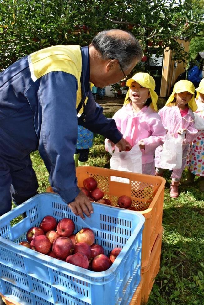 松下果樹園が園児にリンゴをプレゼント 芽室