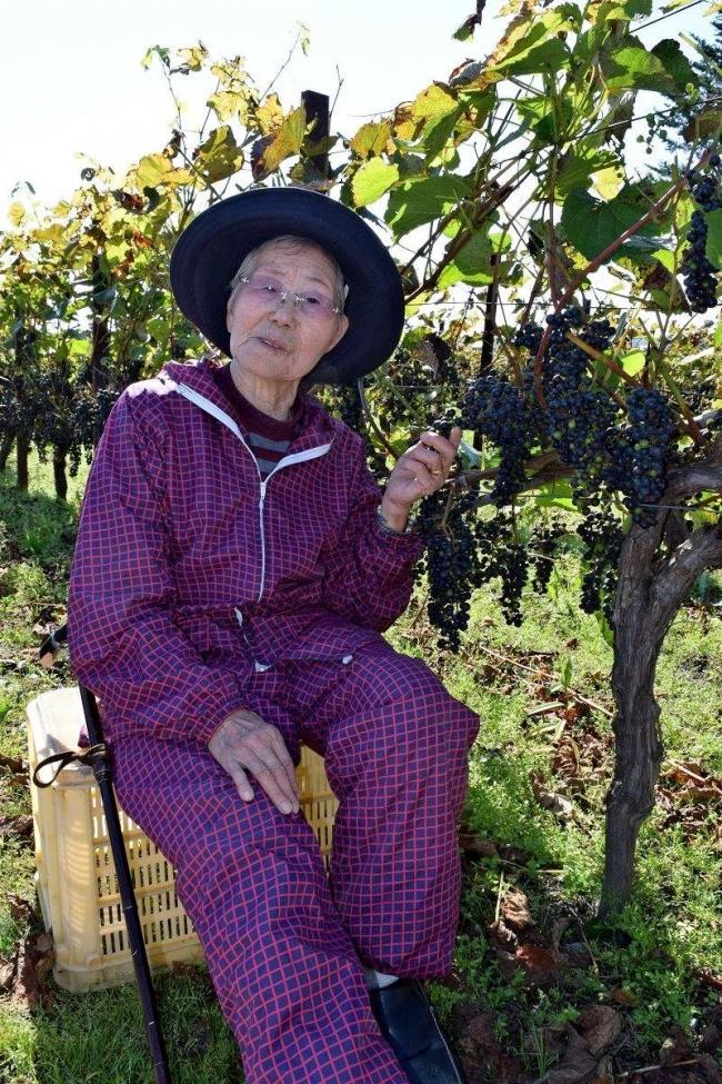 90代でも元気、池田の鈴木さんブドウ販売