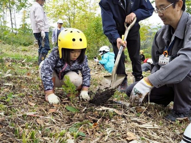 児童が植樹体験 大樹