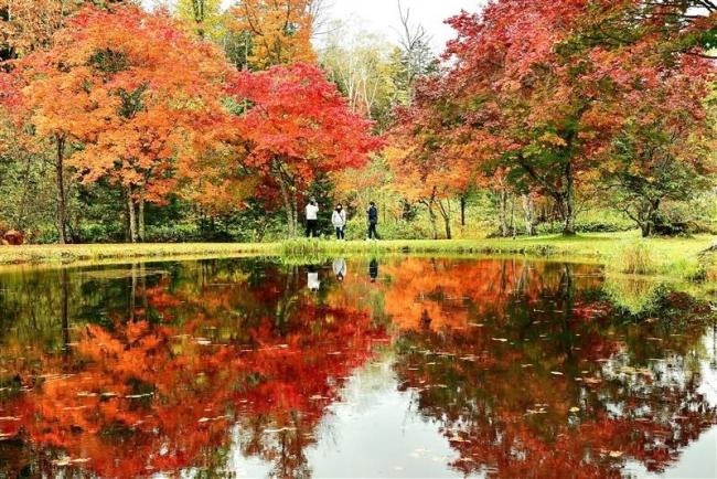 今週末が最大のピークに 鹿追・福原山荘の紅葉