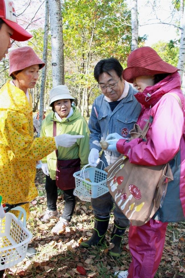安全なキノコは 専門家迎え探索 大樹