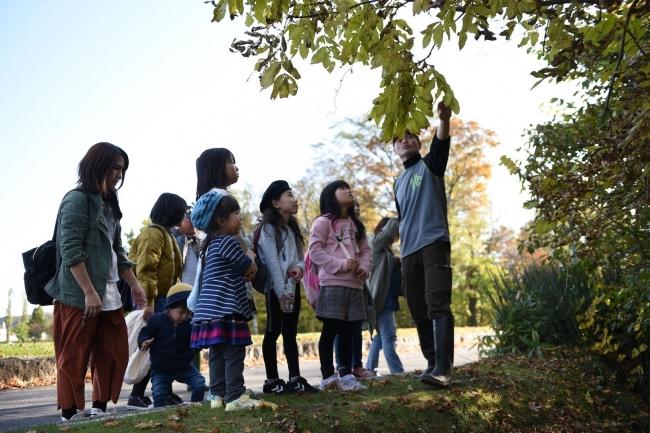 紅葉や木の実を観察 幕別で児童「秋の散策」