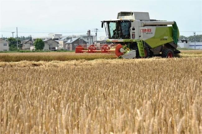 十勝小麦ホクレン販売量 3割減の17万トン