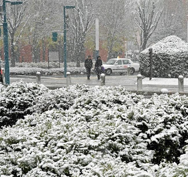 市街地うっすら雪化粧 帯広で初積雪