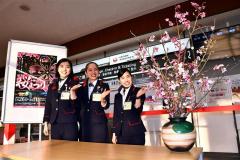 とかち帯広空港に「日本一早い桜の花」展示