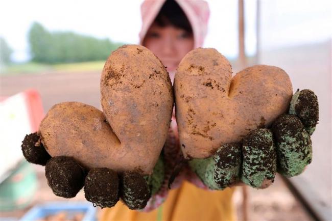 粟野さん、三浦さんが準グランプリ受賞 「十勝の食」写真コンテスト