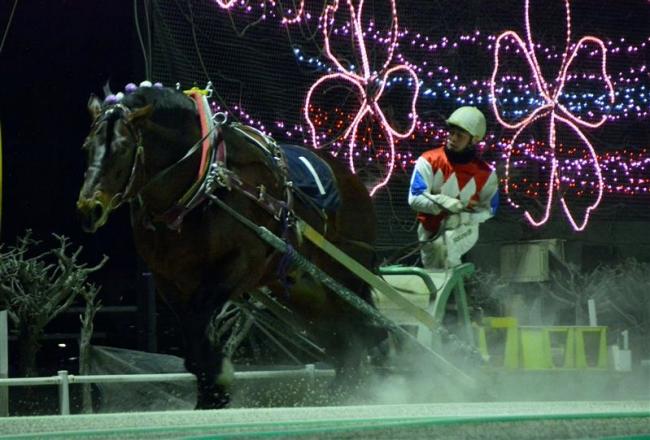 メジロゴーリキ4、5歳馬の世代間対決制す ばんえいポプラ賞