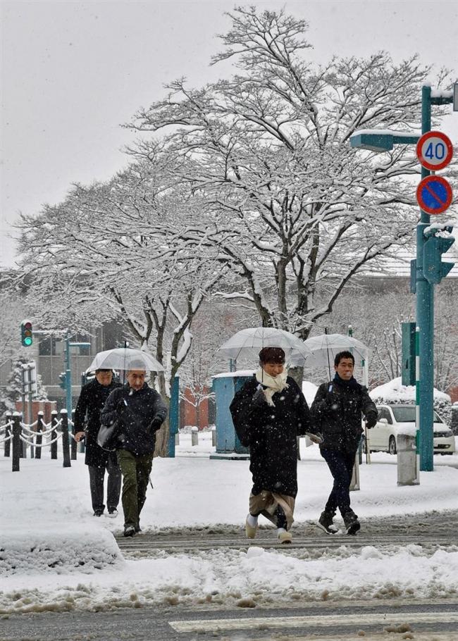 各地で雪景色に 大樹で18センチ