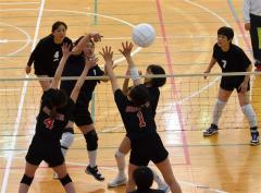 カチョカヴァロ初優勝 東北海道フクハラ杯ミニバレー大会