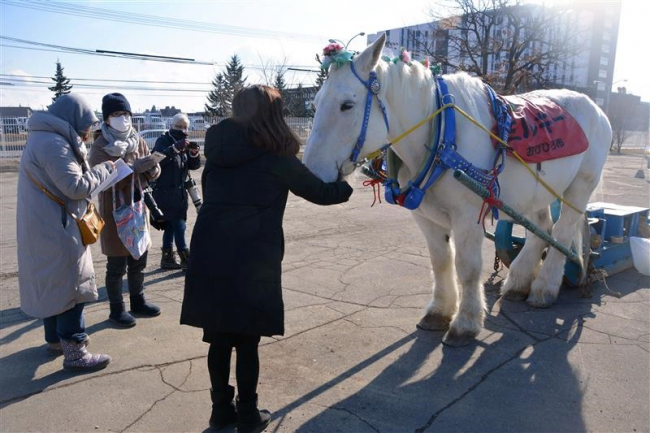 ミルキー号も元気に登場 イベントにぎわう ばんえい記念開催の競馬場